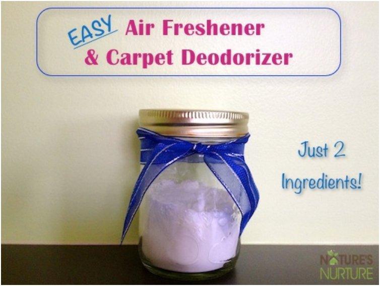 Homemade Air FreshenersRoom & Carpet Deodorizers