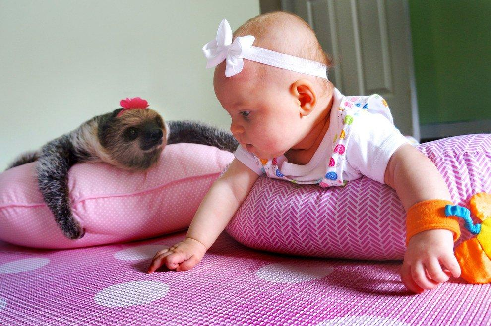 The Most Adorable Pair Ever: Baby-Girl Alia And Little Sloth Daisy
