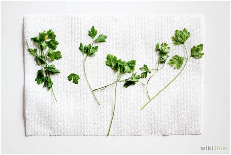 670px-Dry-Herbs-in-the-Microwave-Step-6