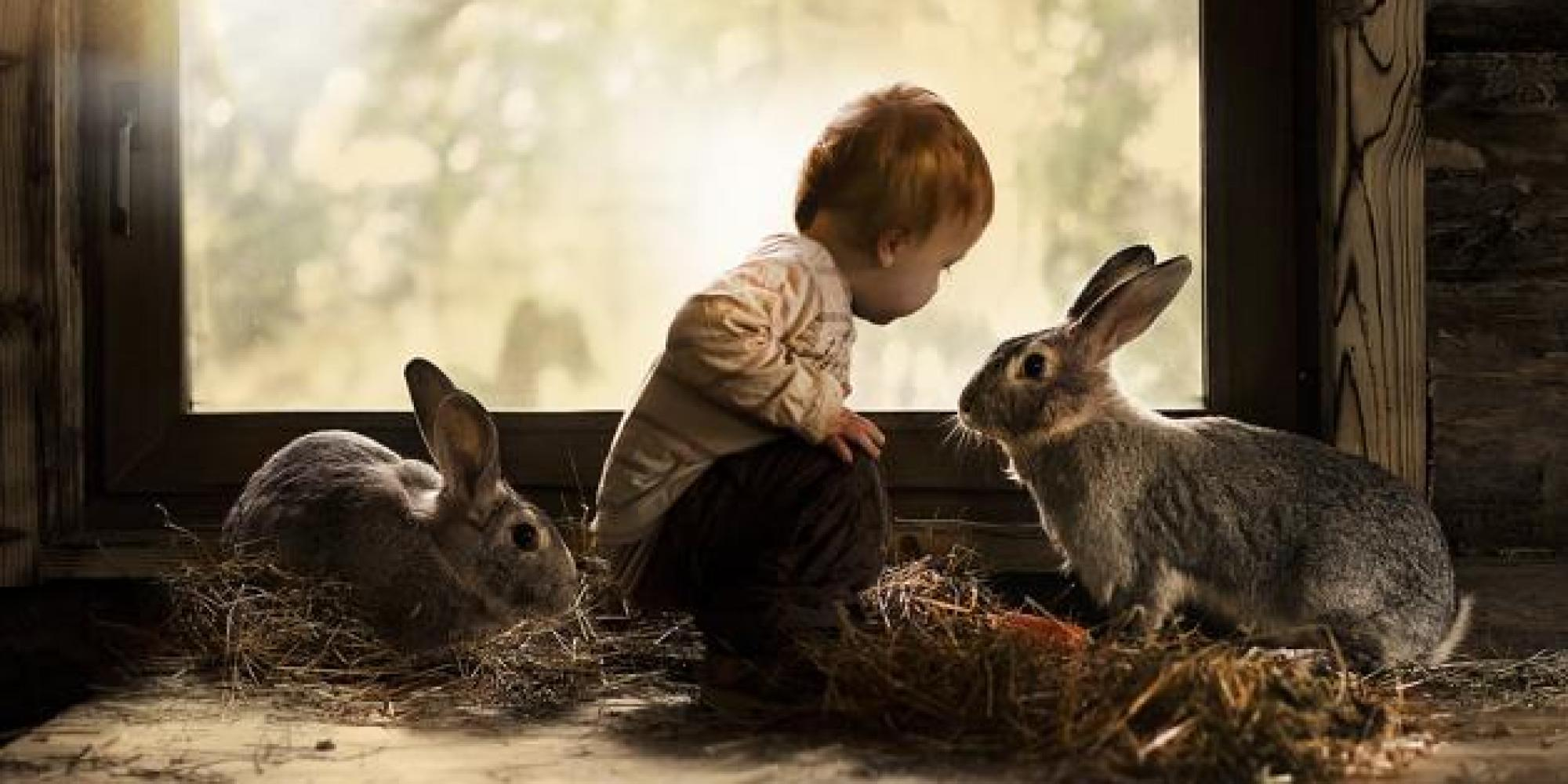 o-BOY-WITH-TWO-RABBITS-facebook