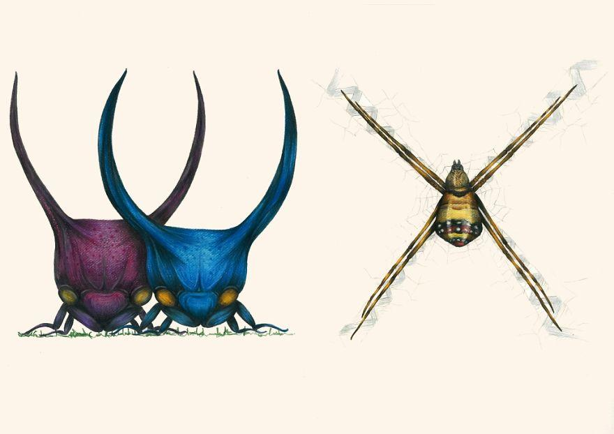 The Insect And Antropod Alphabet: Perfect Art For Bug-Loving Boys