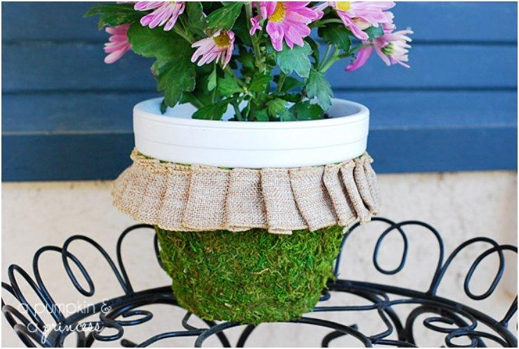Moss Covered Clay Pot