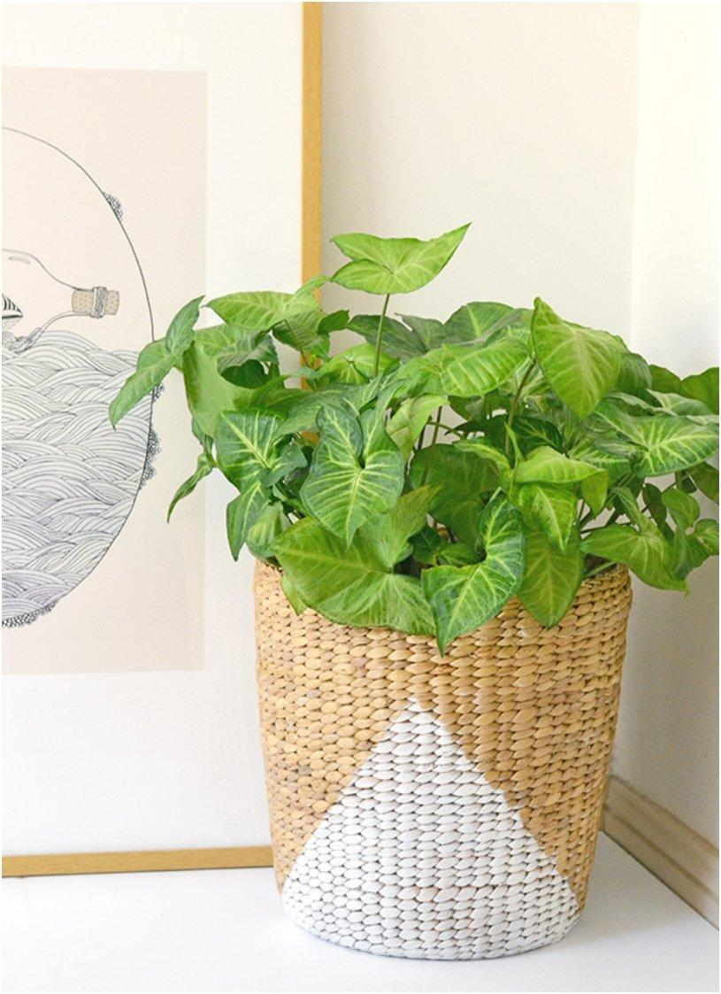 Paintd Basket Planter