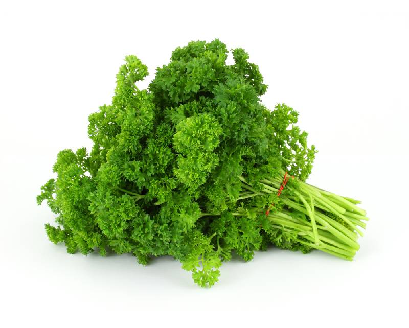 List of the Most Powerful Detox Foods Money Can Buy