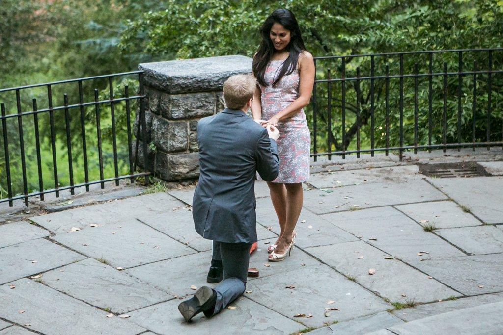 Belvedere Castle Proposal