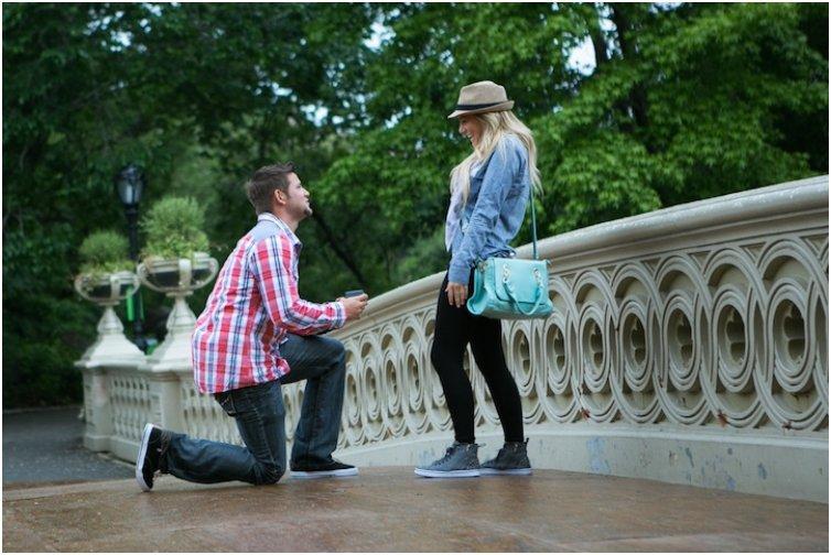 Bow Bridge Central Park Proposal