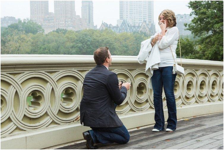 Bow Bridge Central Park Proposals
