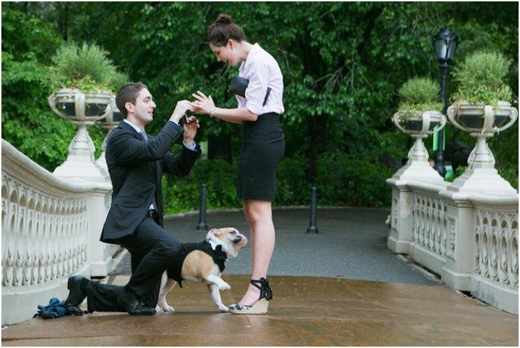 Bow Bridge Wedding Proposal