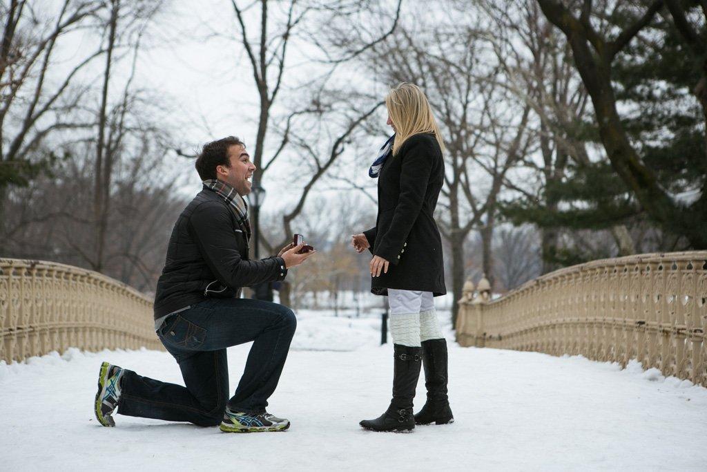 Central Park – Pine Bank Bridge Proposal