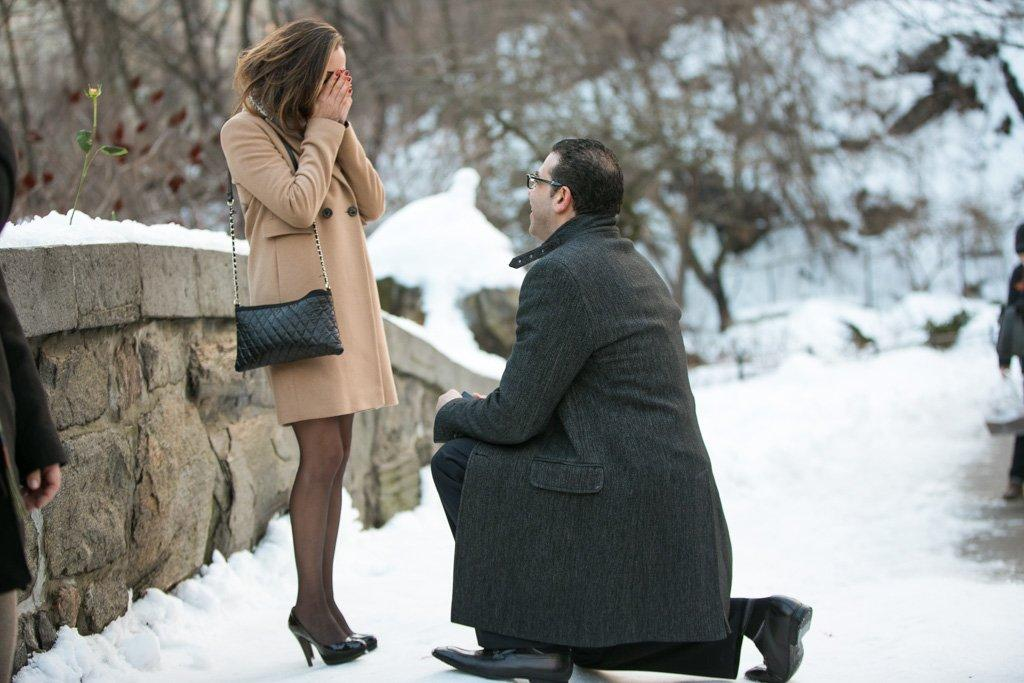 Valentine's Day Proposal at the Gapstow Bridge in Central Park