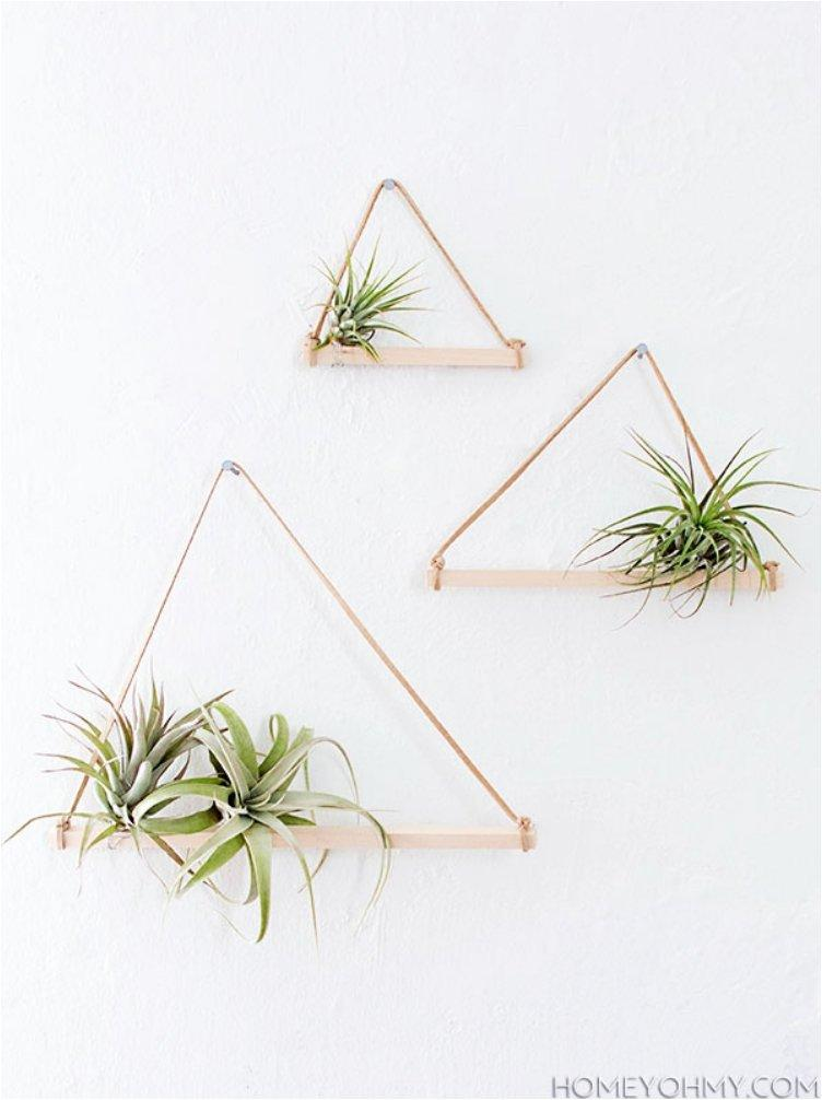 Shower your home with greenery with these 20 diy hanging for Air plant holder ideas