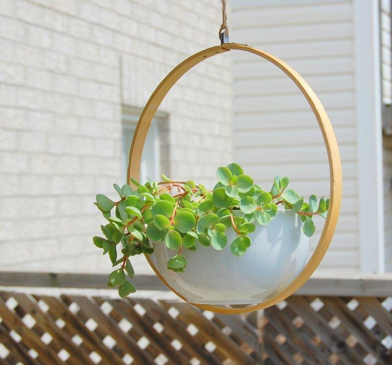 Shower Your Home With Greenery With These 20 Diy Hanging