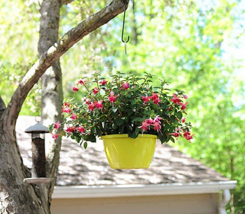 Hanging Planter Makeover