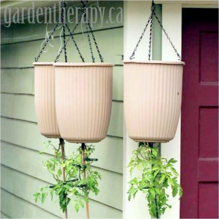 Upside Down Planter
