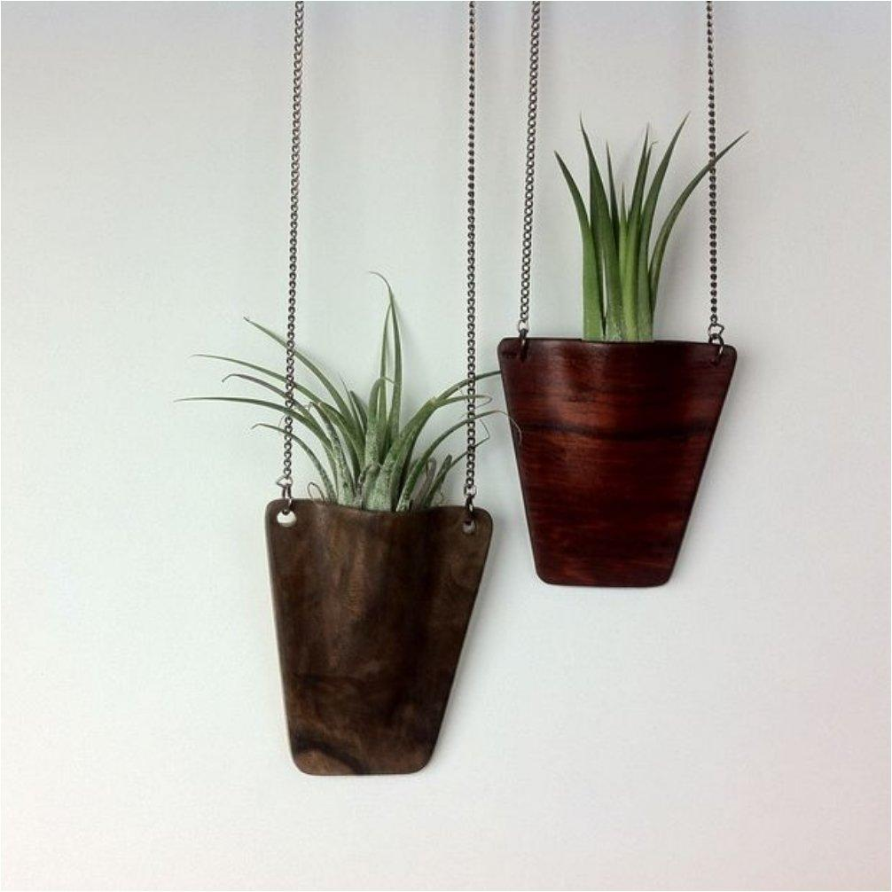 Shower Your Home With Greenery With These 20 DIY Hanging Planters