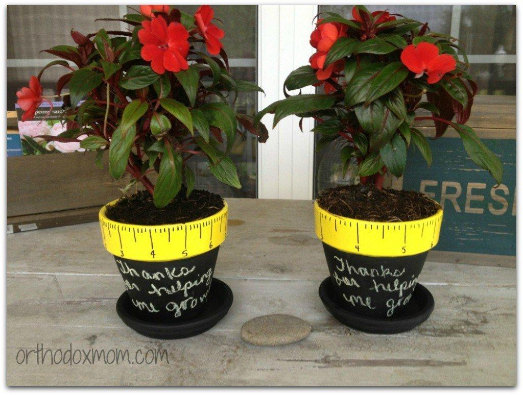 Potted Plant Gift