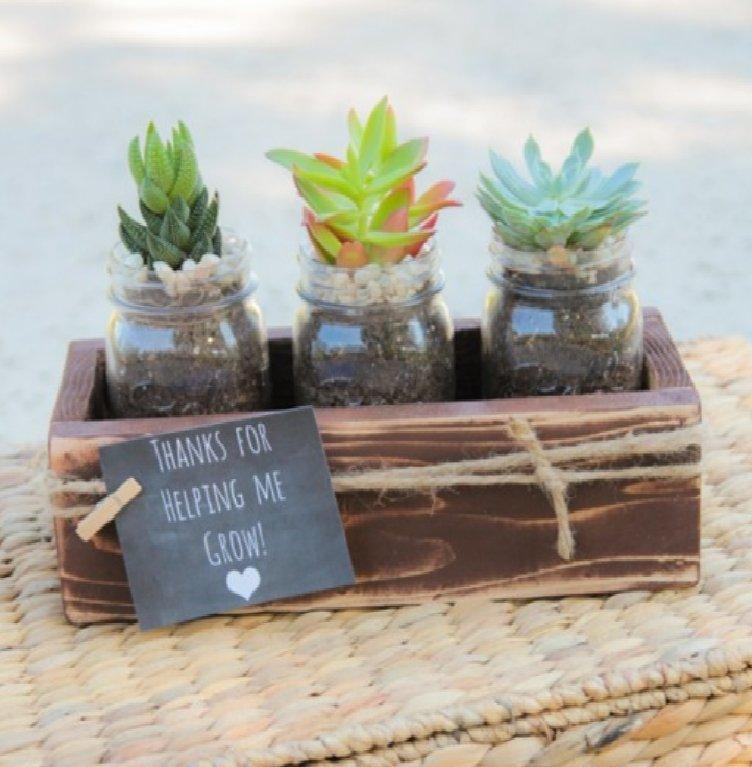 Succulents Teacher Gift Idea