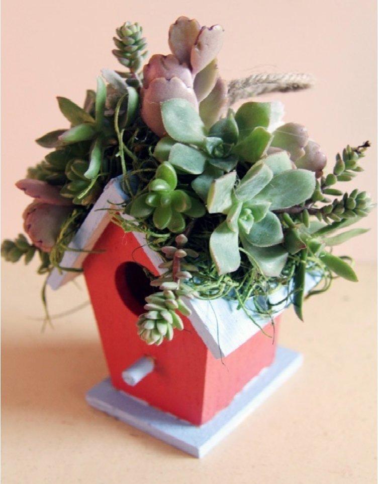 A Little Birdhouse Decorated With Succulents