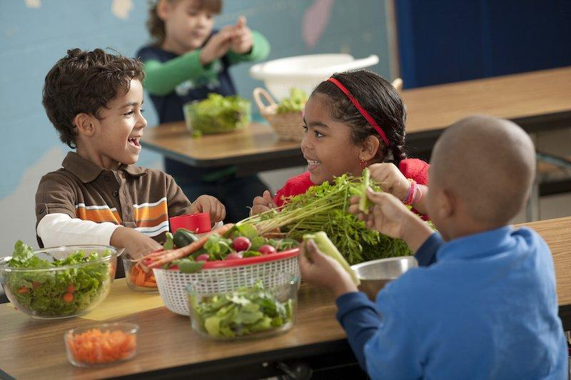 Here Are Healthy Substitutes to The Worst Foods For Your Kids
