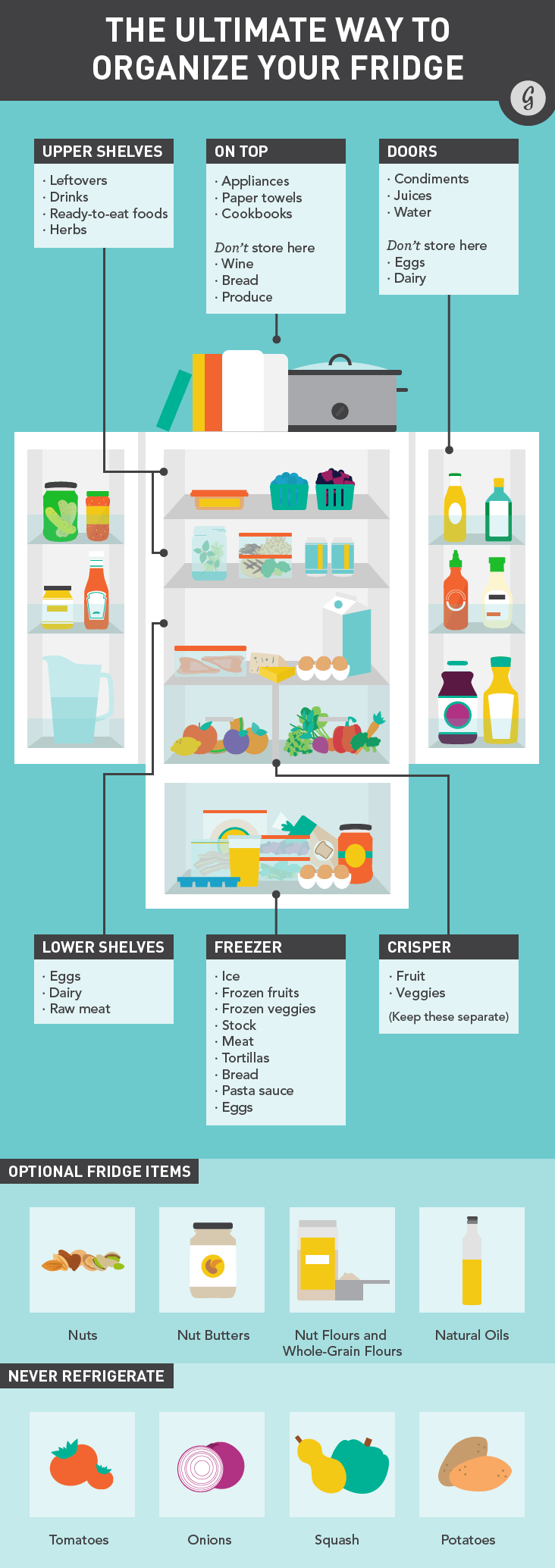 Infographic: How to Perfectly Organize Your Fridge to Cut The Energy Bills