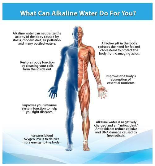 What Does Drinking More Water Do For Your Body
