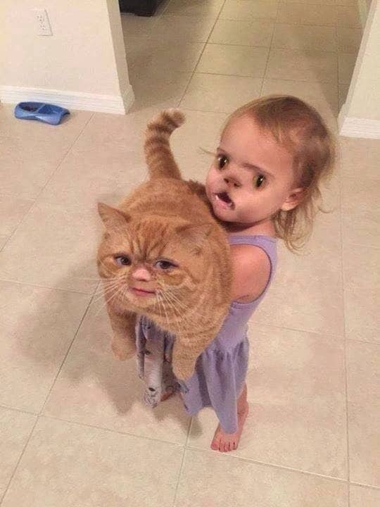 Hilarious Baby Face Swaps for People Who Want to LOL