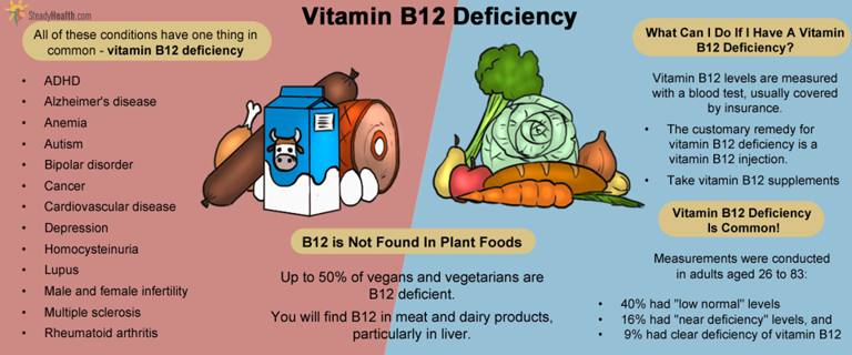Here is Everything You Need to Know about the Vitamin B12