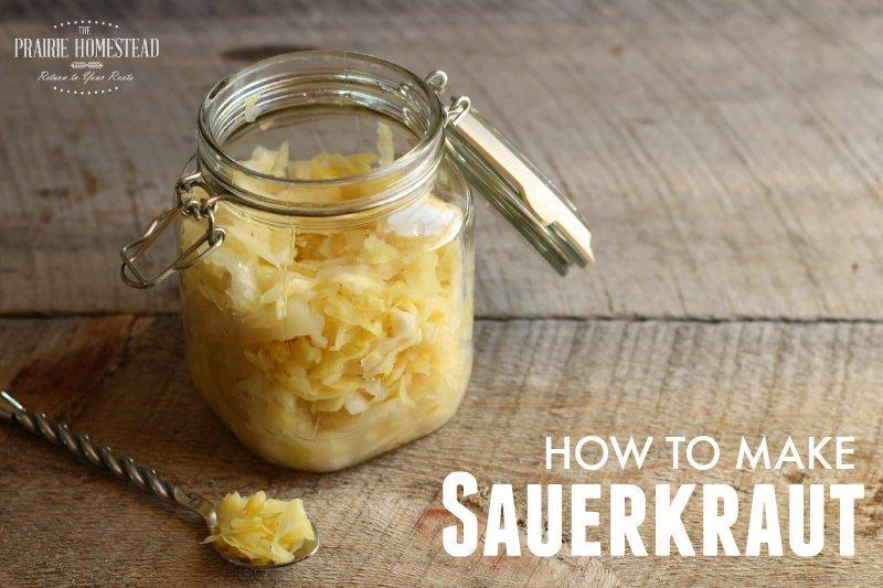 How to Make Sauerkraut at Home by Using 2 Ingredients