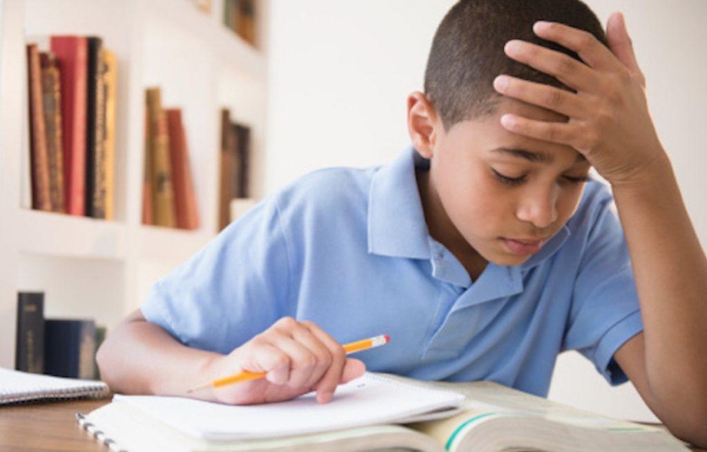 English essay corrector