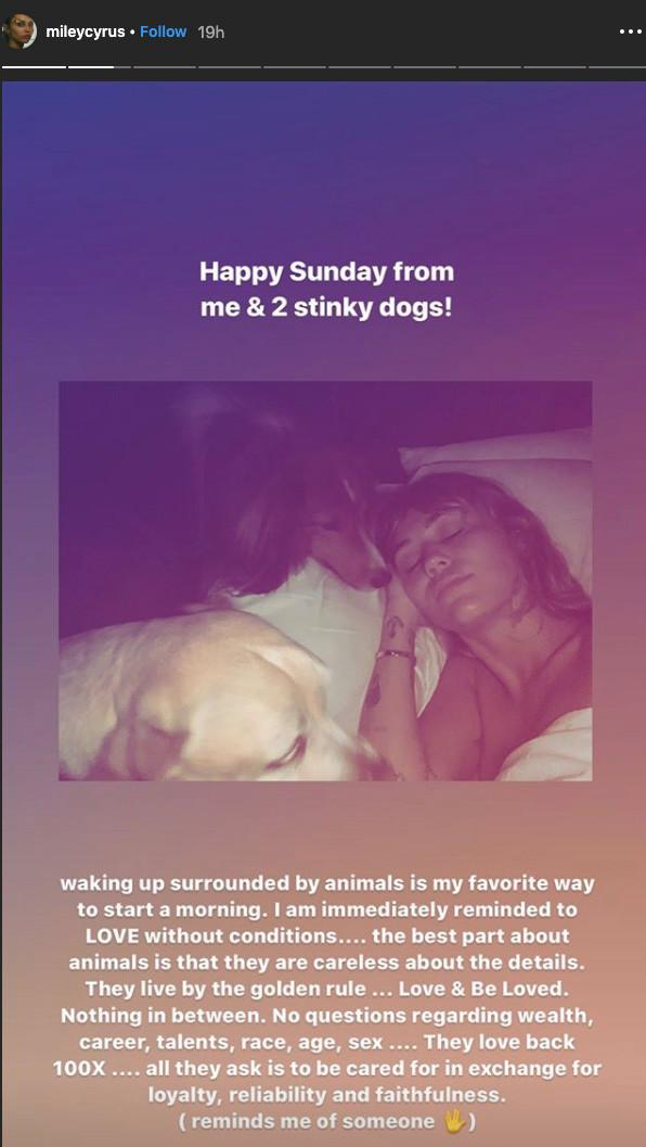 Miley Cyrus shares her love thoughts on Instagram - low key throwing shade at exes Liam Hemsworth and Kaitlynn Carter