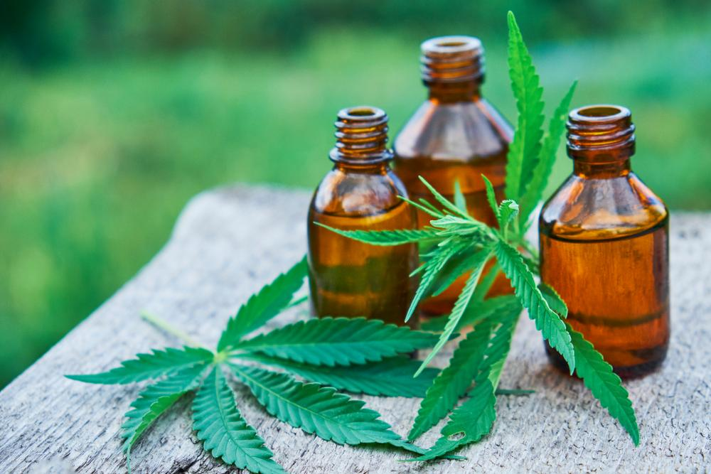 CBD Tincture: Reasons To Incorporate CBD In Your Meals