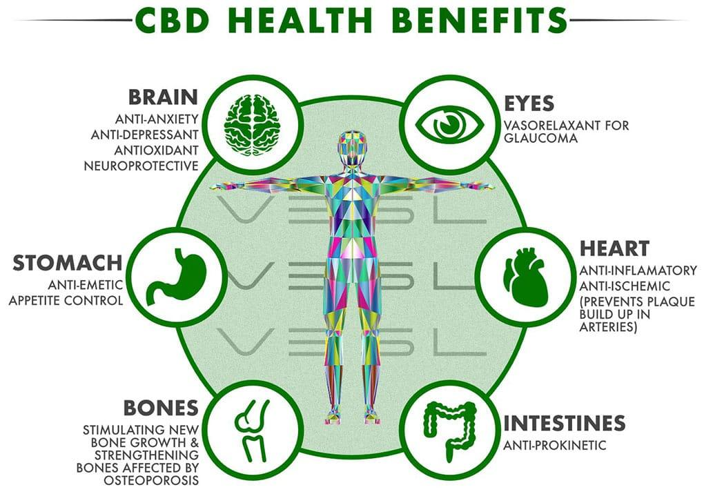 CBD Usage; The benefits and why it is on the rise