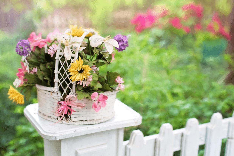Flowers Garden Landscape