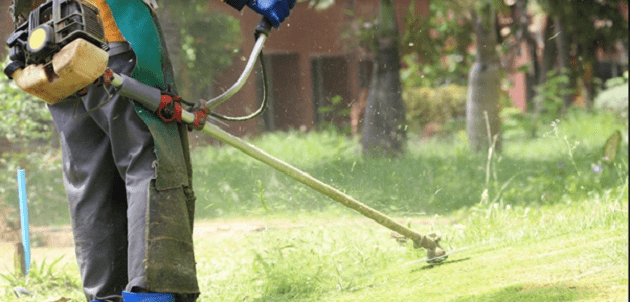What tools do you need to clear a garden?