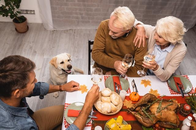 Find The Right Food For Your Dog