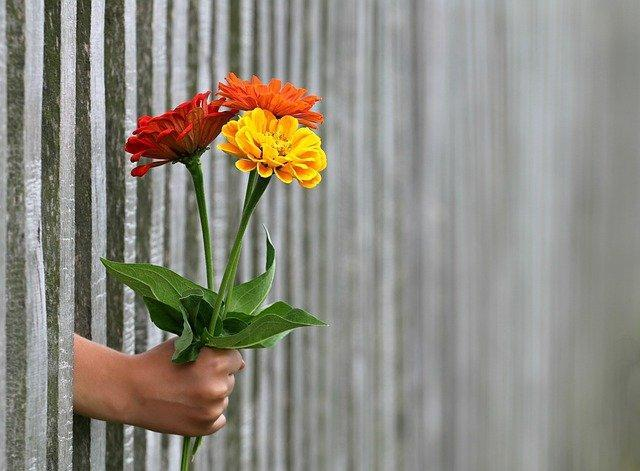 5 Best Flowers to Give Kids
