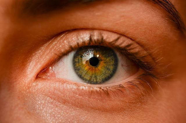 How To Choose Vision Insurance Providers