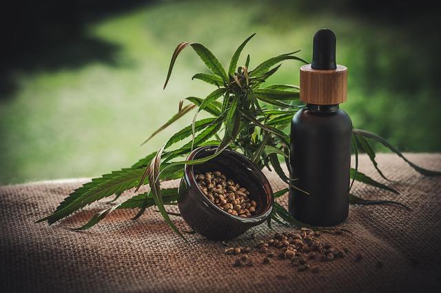 Is CBD Of Any Help To Improve Your Gut Health & Digestion