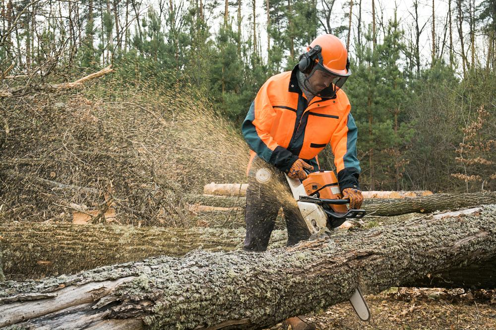 How to Finding Logging Equipment Parts for Sale Online